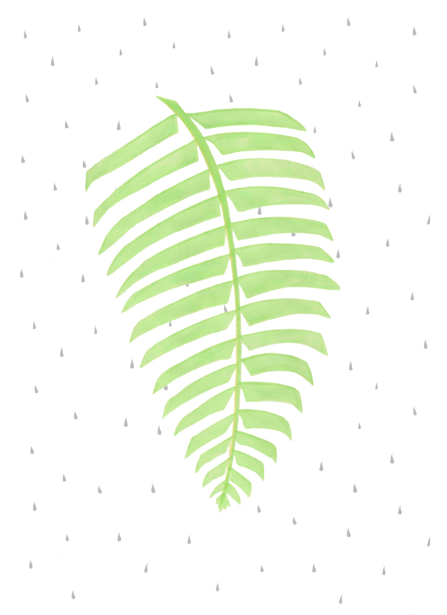 A beautifully illustrated print of a fern plant leaf, exquisitely printed by designers Born Lucky. This modern print will soon become a favourite in any room of the house.  Available unframed and in two sizes A4 & A3  Designed and printed in the UK