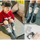 Character Socks Collection