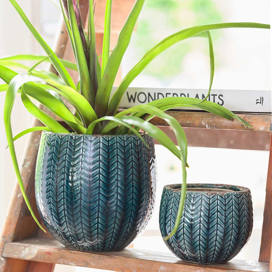 Faja Plant Pot - Dark Blue Medium - Large