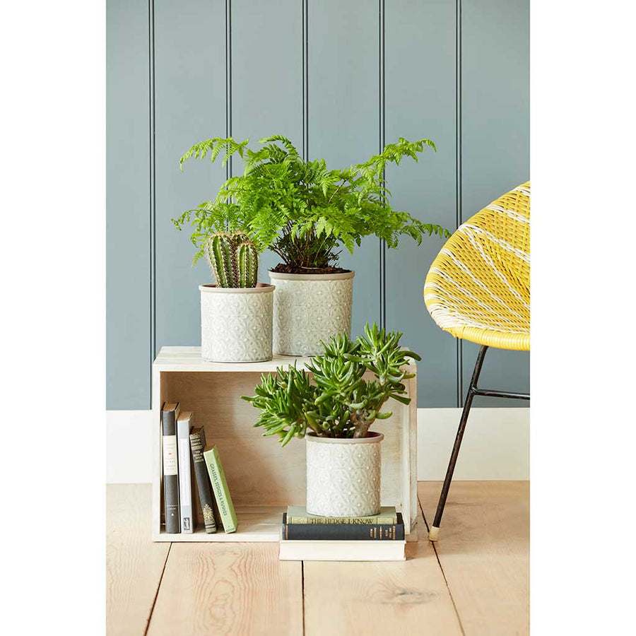 Porto Plant Pot - Grey - Small