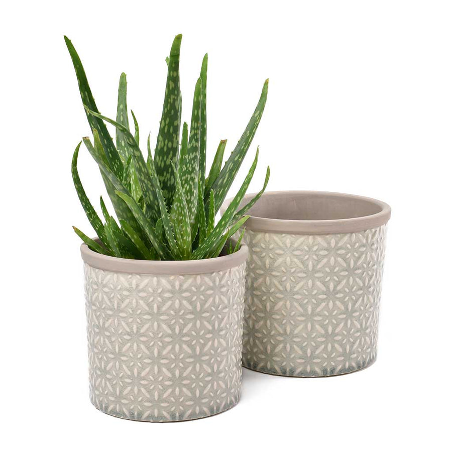 Tuscany Plant Pot Small - Grey