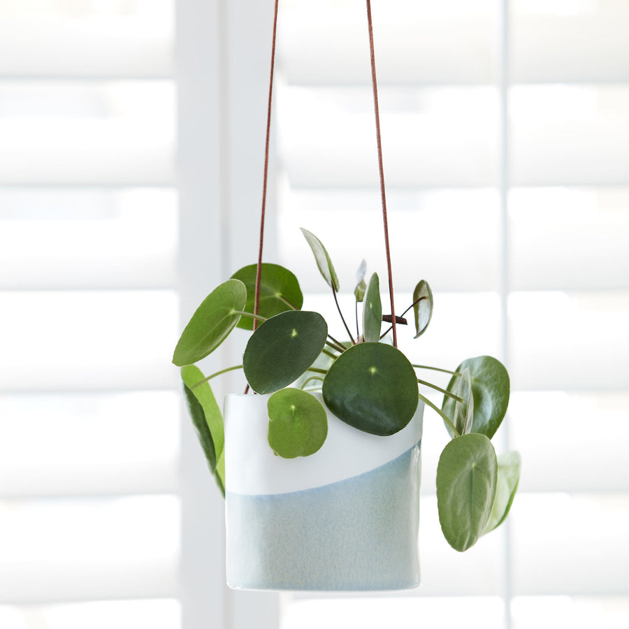 Dip Hanging Indoor Pots