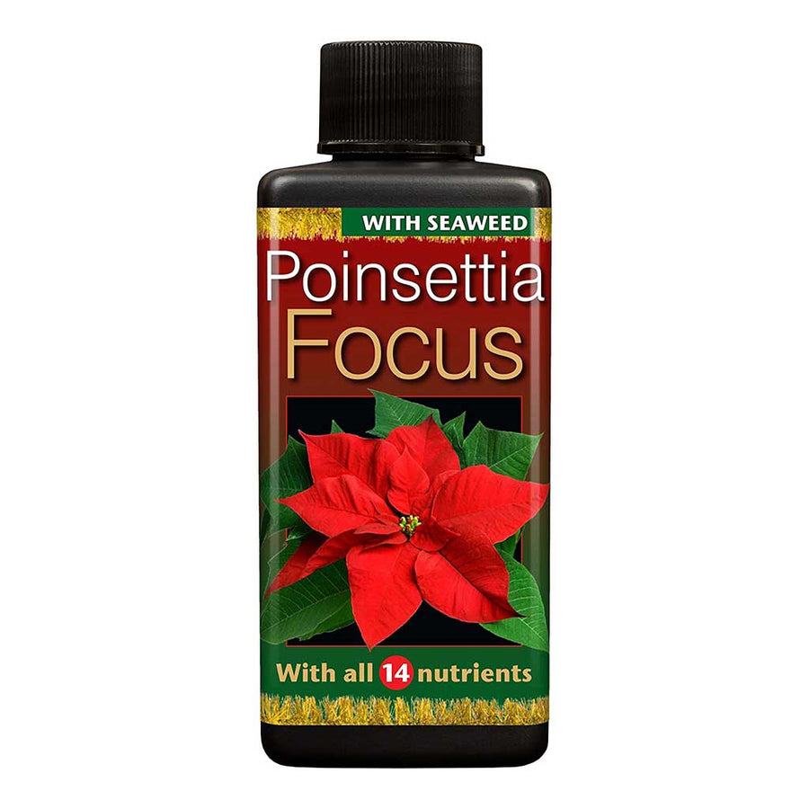Poinsettia Focus - Plant Nutrition