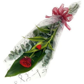 Single Red Rose with Chocolates, Flowers - Oasis Florists