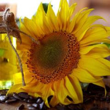 Organic Sunflower Botanical Body Oil | Sweet Life Spa