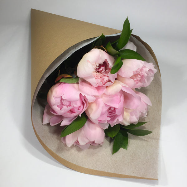 Six peony roses presented in a wrap for Wellington delivery