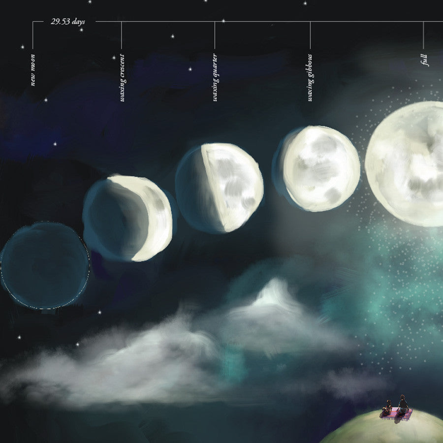 Moon Phases Educational Wall Sticker