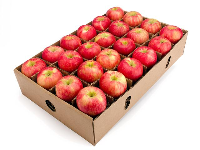 Honeycrisp apple -Fruit Gift Basket- Organic Fruit Delivery - Fruitshare