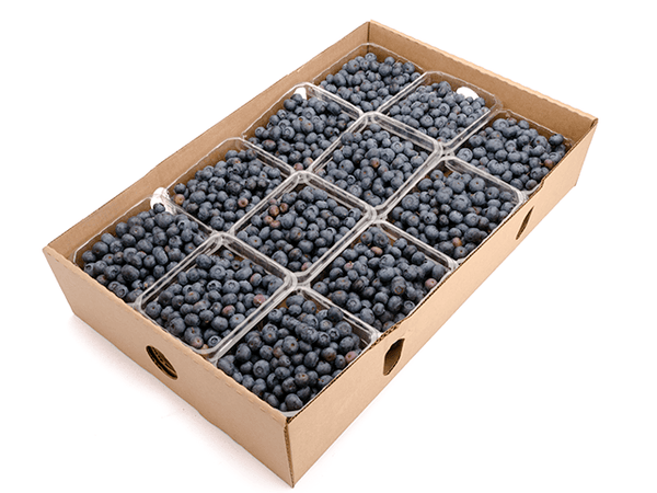 Blueberries 12 pt - Organic Fruit Delivery - FruitShare