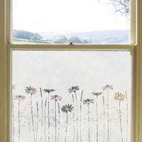 Daisy Meadow's Edge Window Film