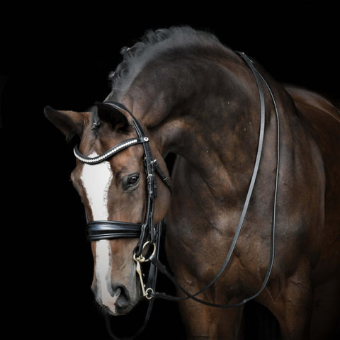 Image of Solo ShowBiz - Dressage Double Bridle. Dressage Bridle in Patent black with anatomical shape. Bling browband. Padded dressage bridle