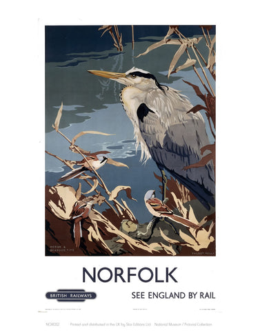 "Norfolk Heron 24"" x 32"" Matte Mounted Print"
