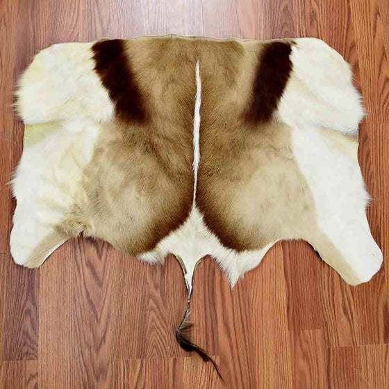 Springbok Back Skin for Sale