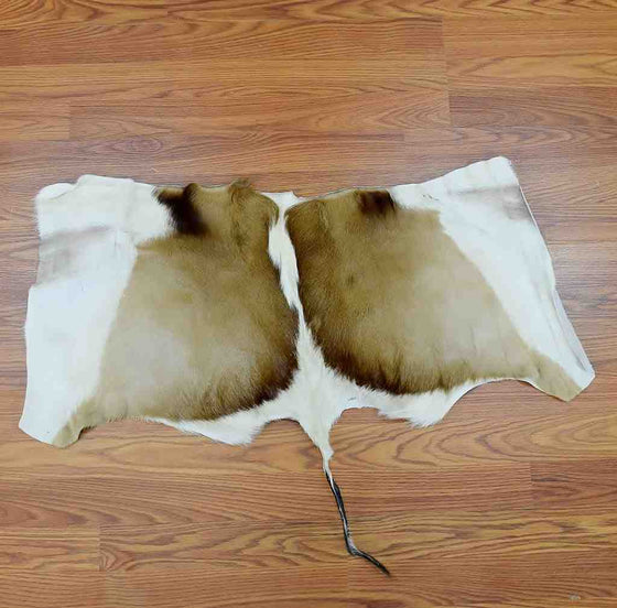 Springbok Hide for Sale