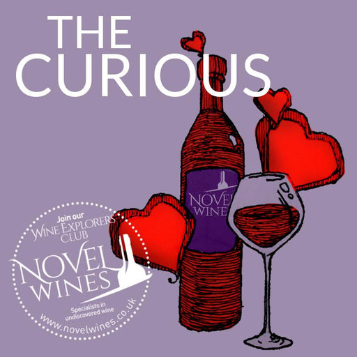 NEW The Curious Wine Subscription Box by Novel Wines