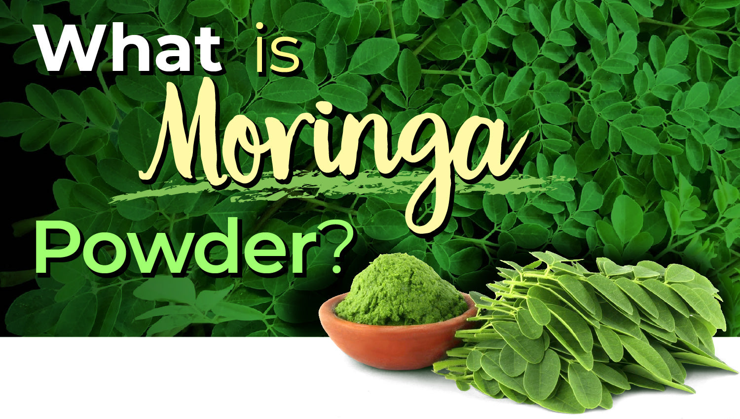 What is Moringa Powder? 3 Simple Ways to Use It | Blog | Alovitox Organic Superfoods