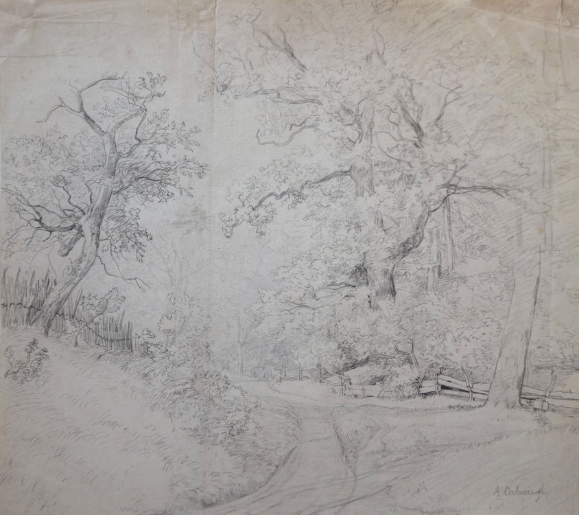 Alexandre Calame Dessin - Drawing (sold)