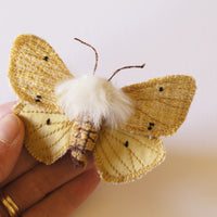 Brooch Buff Ermine Tiger Moth Entomology