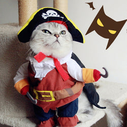 Pirates of the Caribbean costume costume - Grr Cats