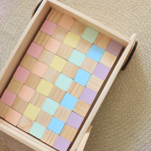 Wooden 48 Piece Block Set - various colour combinations