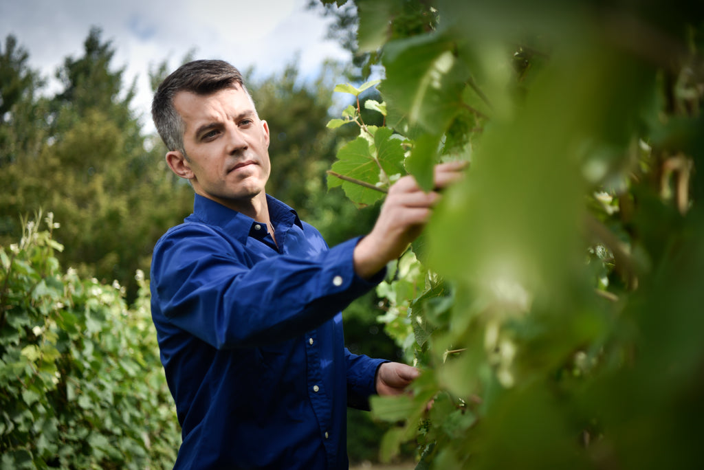 Video of Wine Talks British Business with Brad Greatrix from Nyetimber