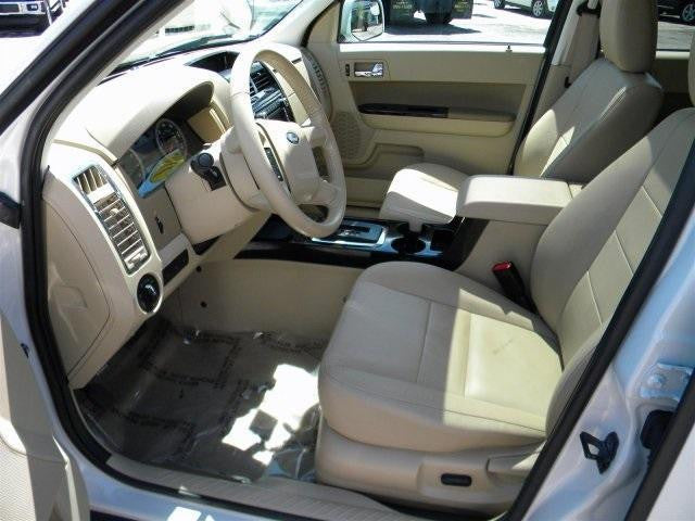 Ford Escape Bucket Seats