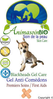 Gel Traitant & Anti-Comédons - Chien / Treating  & Anti-Blackheads Gel - Dog -P