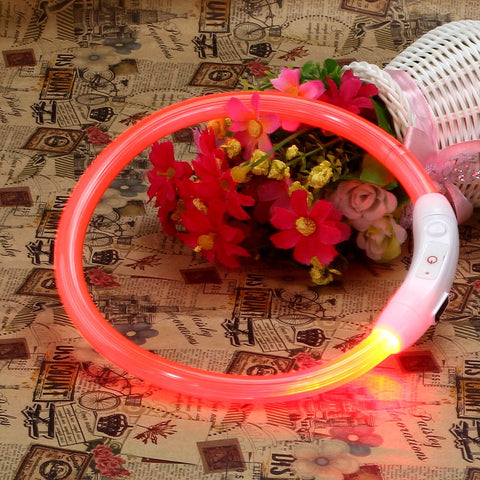 USB Rechargeable Waterproof Led Light up in the Dark Dog & Cat collar - FOURPAWPALS