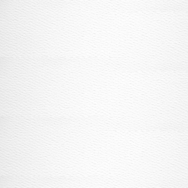 Classic Avalanche White 110 lb Felt Cardstock, 5