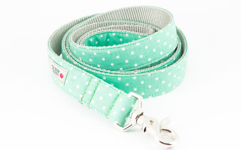 Mint Dot Dog Leash