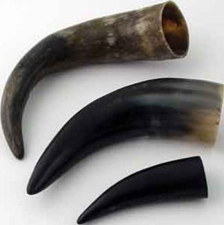 Water Buffalo Horn 10-12 inch Natural - Deer Shack