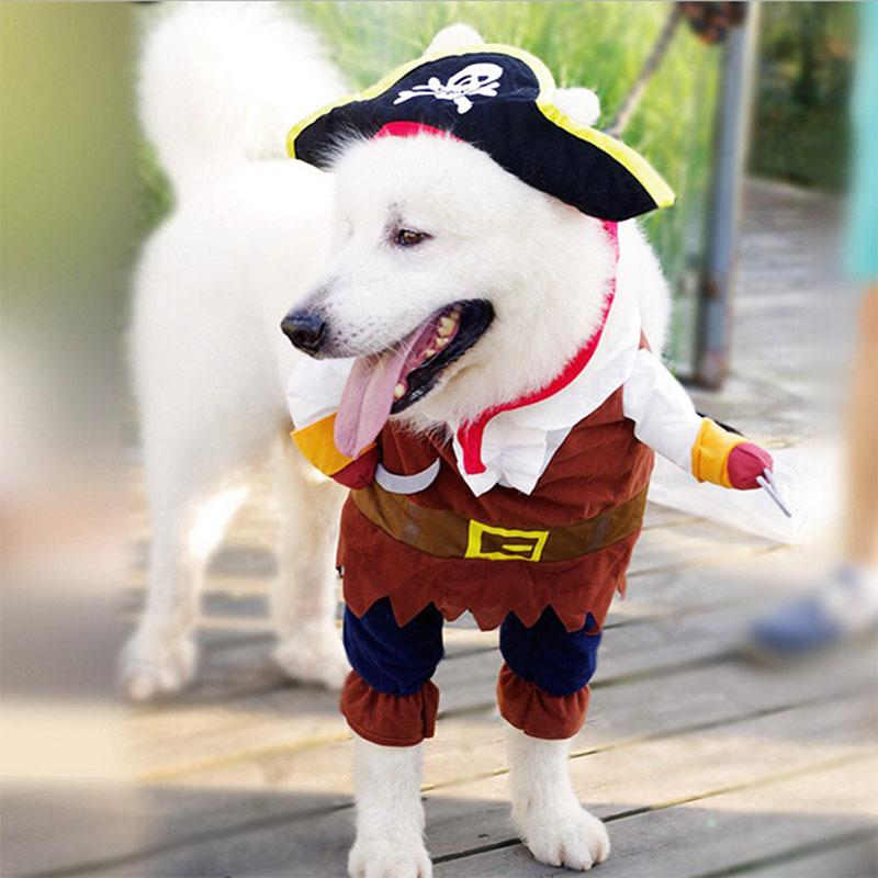 Costume Pirate Adorable Chats et Chiens - VentesFlashFrance