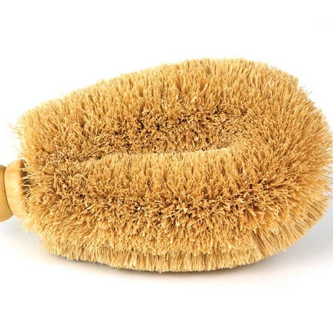 "Down To Earth - Large Coir 6"" Veggie Brush With Wood Knob"