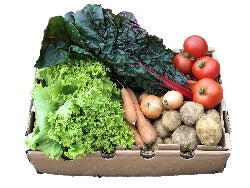 Small Vegetable Box (7 portions)