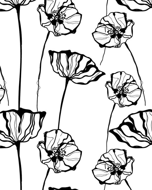 Poppy Sketch Wallpaper