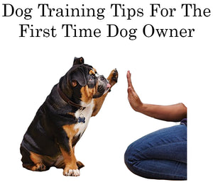 Dog Training Tips For The First Time Dog Owner