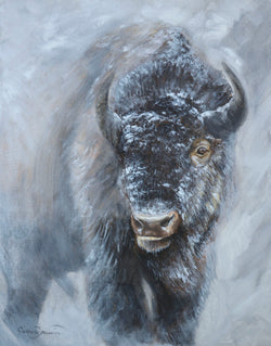 bison buffalo montana in snow wildlife art by james corwin fine artist canvas print