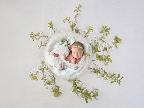 Newborn Photography Digital Backdrop for boys or girls - simple white nest with white blossom