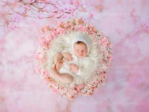 Newborn Digital Backdrop - Pink Blossom