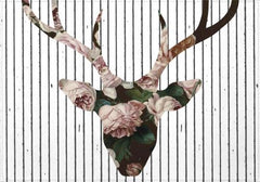 Individuales Deer in Bloom - Galeria Impresionarte