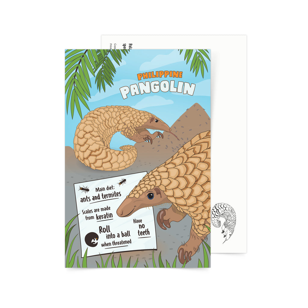 Facts About Philippine Pangolin Postcard Philippines gift