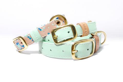 HEY DOG Co. NEW ARRIVAL | Sweet Mint Cream Collar