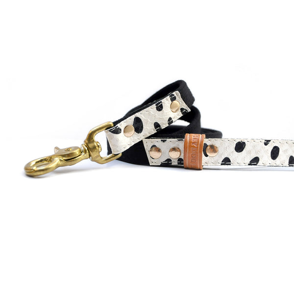 HEY DOG Co. NEW ARRIVAL  | Dalmatian Leash