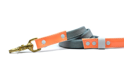 HEY DOG Co. NEW ARRIVAL | ORANgEON Leash