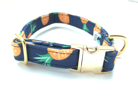 4 Black Paws | Blue Pineapple Collar