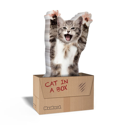Cat in a Box Cat Shaped Sticky Notes (150 sheets)
