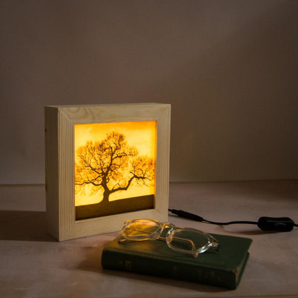 Accessories for a living room: the Dark Tree lightbox is a unique bedside lamp