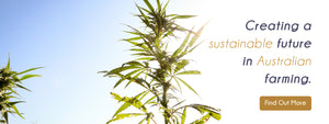 Australian Primary Hemp Farming