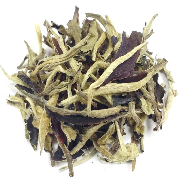 White Tea Silver Moonlight Wild White