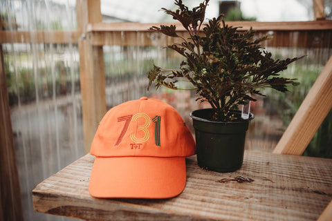 Area Code 731 Orange Hat